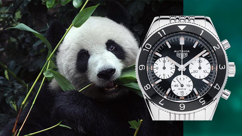 Uhren mit Panda-Zifferblatt auf watch.de